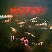 Nattliv by Bülow