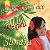 De Polonaise nao Mexico by Sandra