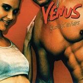Kockahas von Venus