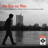 I See a Darkness / Des ollaletzte Liad (Live at Ö1 Kulturzelt Donauinselfest) by Der Nino Aus Wien