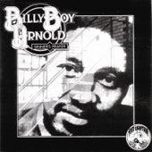Sinner's Prayer by Billy Boy Arnold