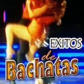 Exitos de Bachatas de Galileo Y Su Banda