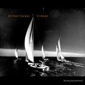 Crimson (feat. Joan Jeanrenaud) by Michael Halaas
