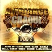 Ambiance Chaoui Vol. 2 de Various Artists