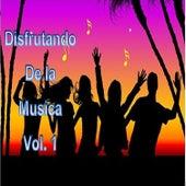 Disfrutando de la Musica, Vol. 1 de Various Artists