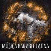 La Mejor Musica para Bailar en una Noche de Fiesta: Fin de Año, Navidad, Fiestas de Cumpleaños, Bodas y Guateques von La Orquesta de la Discoteca