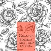 Grandes Boleros para Toda una Vida by Various Artists