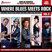 Where Blues Meets Rock Vol. 9 von Various Artists