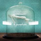 La Paradinha by Anesthesia