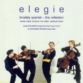 Elegie von Various Artists