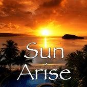Sun Arise de Various Artists