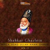 Shahkar Ghazlein, Vol. 1 by Various Artists