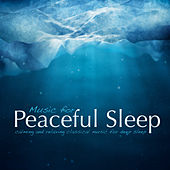 Music for Peaceful Sleep von Various Artists