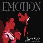 Emotion de John Stein