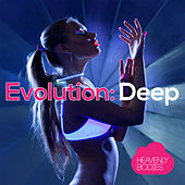 Evolution: Deep de Various Artists
