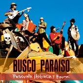 Busco Paraíso de Pascuala Ilabaca