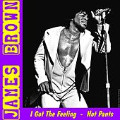 I Got the Feeling by James Brown