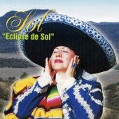 Eclipse de Sol by SOL