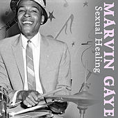 Sexual Healing von Marvin Gaye