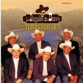 Tengo Ganas De Ti by Los Ilegales del Bravo