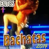 Exitos de Bachatas (2014) de Galileo Y Su Banda