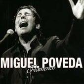 Flamenco de Miguel Poveda