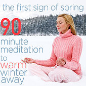 The First Sign of Spring - 90 Minute Meditation to Warm Winter Away de Various Artists