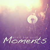 Music for Quiet Moments von Various Artists