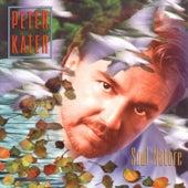 Soul Nature de Peter Kater