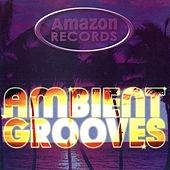 Ambient Grooves de Various Artists