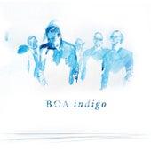 Indigo by BoA