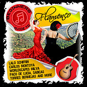 Beginners Guide to Flamenco by Various Artists