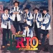 Cuando Se Quiere by Conjunto Rio Grande