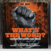 What's The Word – Socially Conscious Soul Music de Various Artists