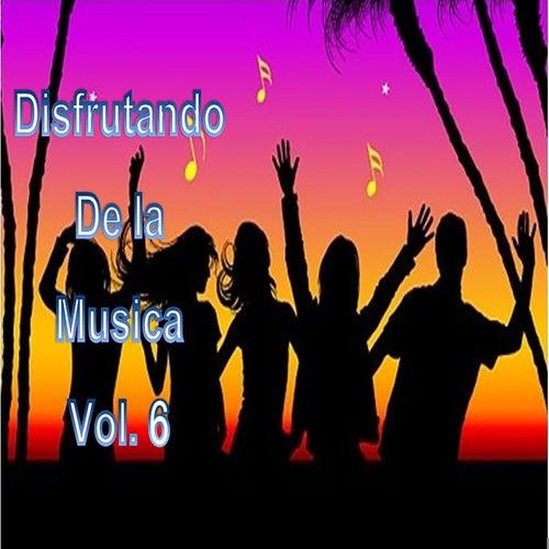 Disfrutando de la Musica, Vol. 6 by Various Artists