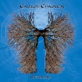 Respirar by Carlos Chaouen