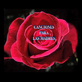 Canciones para las Madres by Various Artists
