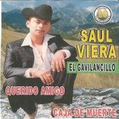 20 Exitos Querido Amigo by Saul Viera el Gavilancillo