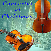 Tommaso Albinoni: Concertos at Christmas by Trevor Pinnock