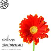 Musica Profunda, Vol.1 (A Great Selection of Deep House Cuts Selected and Mixed By Willy Sanjuan) de Various Artists