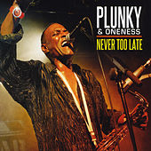 Never Too Late by Plunky & Oneness