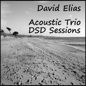 Acoustic Trio: DSD Sessions von David Elias