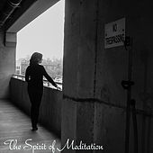Guided Meditation for Releasing the Past von Guided Meditation