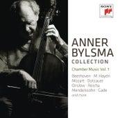 Anner Bylsma plays Chamber Music Vol. 1 von Anner Bylsma