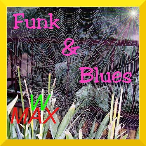 Funk & Blues by W Max