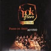 Passo De Anjo Ao Vivo de SpokFrevo Orquestra