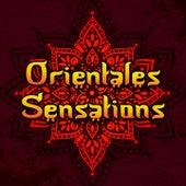 Orientales Sensations de Various Artists