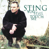 You Still Touch Me by Sting
