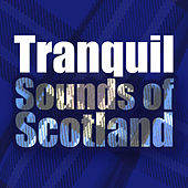 Tranquil Sounds of Scotland di Various Artists