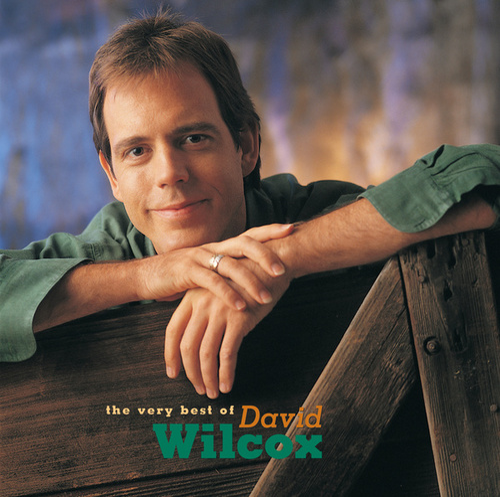 The Very Best Of David Wilcox by David Wilcox